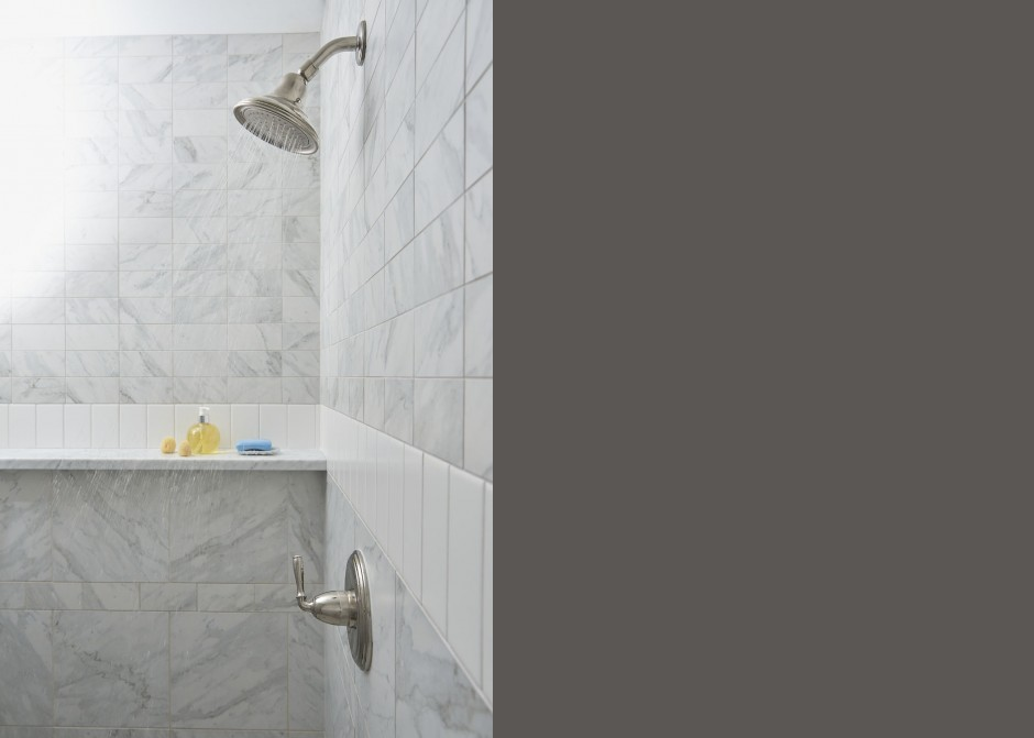 Tiled shower, carrara marble shelf, porcelain tile, Maine Architect