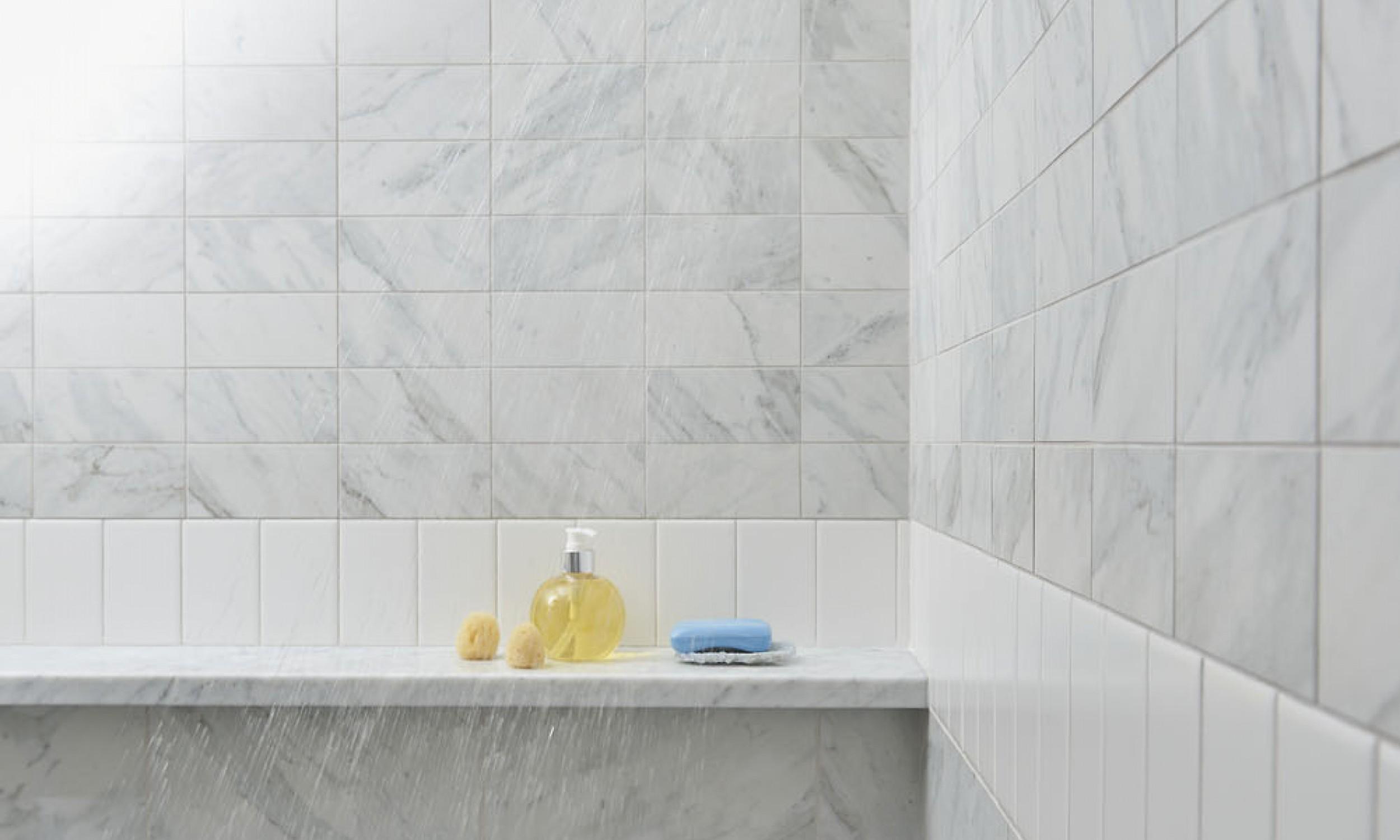Tiled shower, carrara marble shelf, porcelain tile, Maine Architect