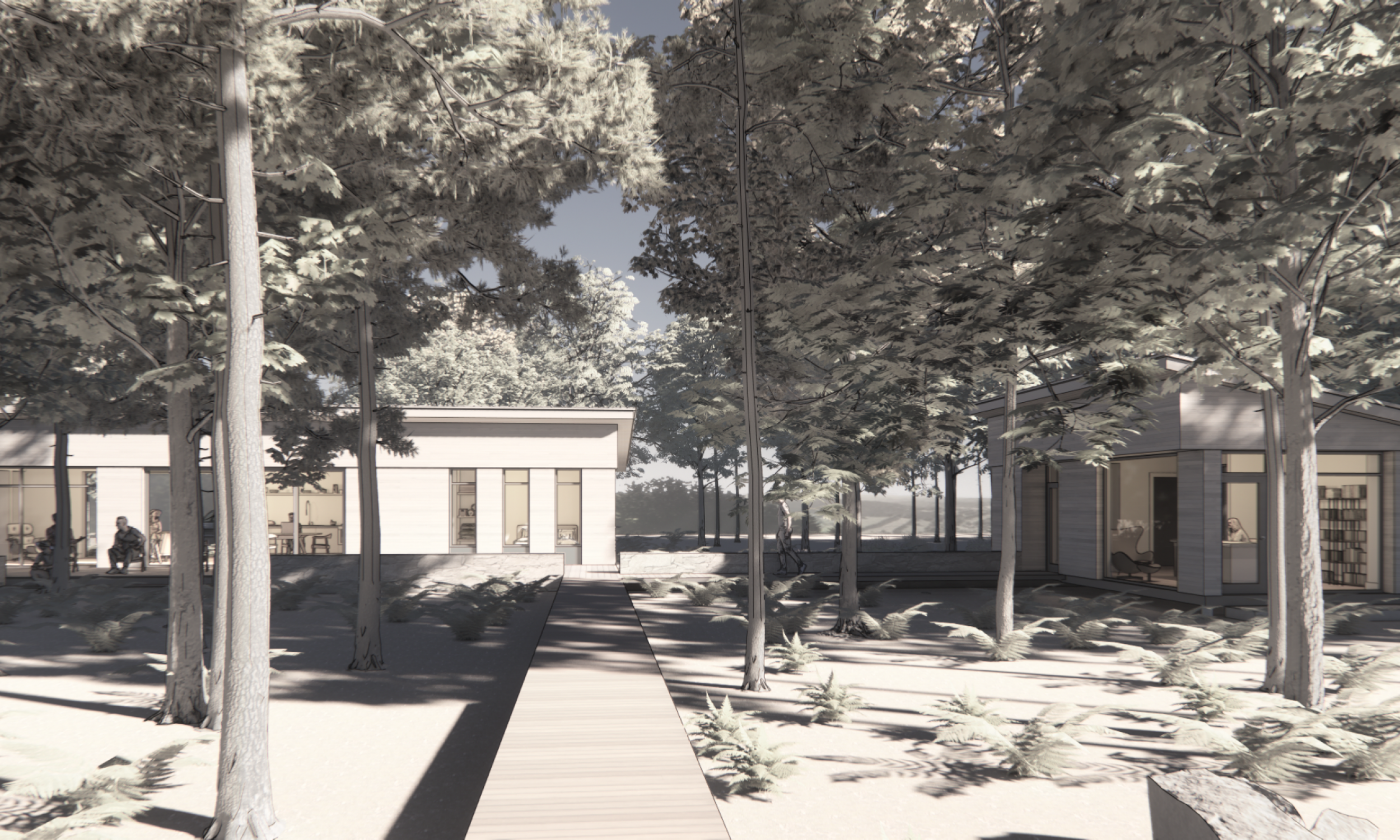 Maine Architecture, Sustainable design, in the forest, Maine Architect, Prefabricated